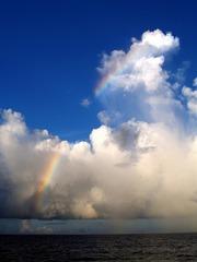 小笠原からの帰りに太平洋上で見た虹 (撮影:中田智玄)